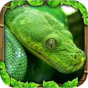 蟒蛇模擬器