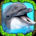 海豚模擬器