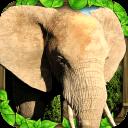 大象模擬器