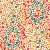 色盲方塊 4X4