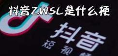 抖音ZWSL是什么意思 ZWSL含義出處介紹