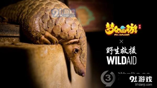 《夢幻西游》手游攜手WildAid打造野生動物保護新玩法