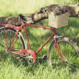 3D模擬自行車越野