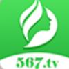 567綠茶直播