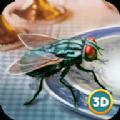 3D仿真蒼蠅模擬器
